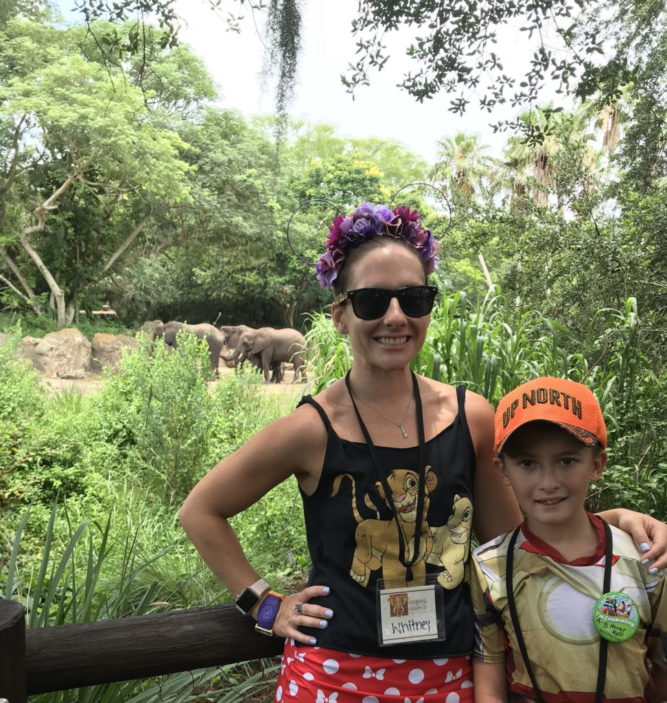 Elephants Animal Kingdom
