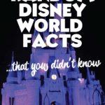 Random DIsney World Facts