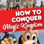 How to Conquer the Magic Kingdom