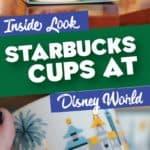 Starbucks Cups at Disney World
