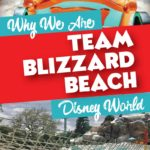 Blizzard Beach Disney Water Park