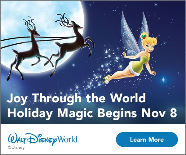 WDW Holiday Promotion