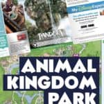 Animal Kingdom map Disney World