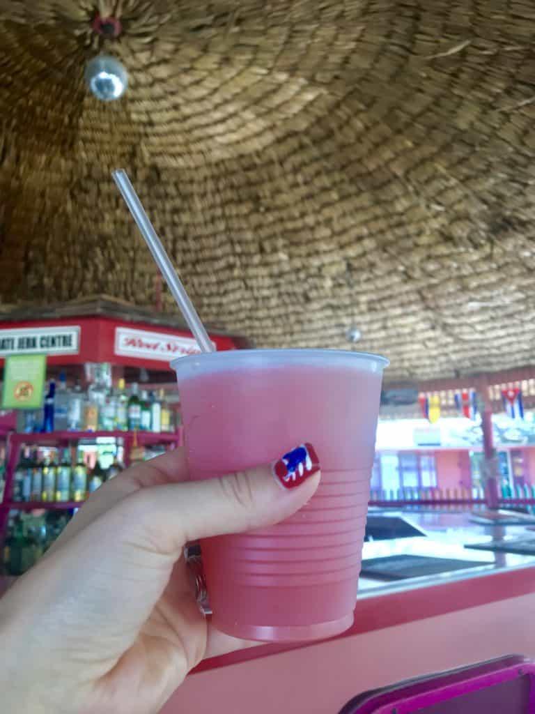 Disney Fantasy 7 Night Western Caribbean Port Adventures Review 50