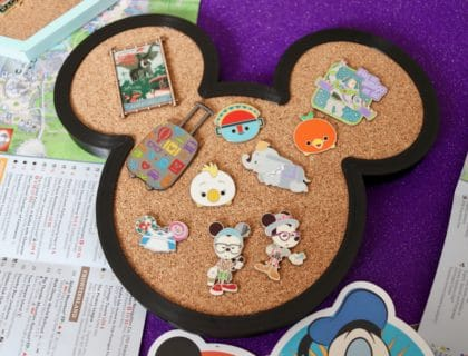 Display your Disney Pin Collection in Style 2