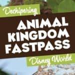 Disney Animal Kingdom Fastpass Tiers