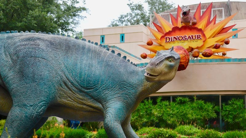 The Best Rides at Animal Kingdom 5