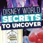 Disney World Secrets to Uncover