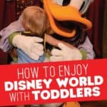 Enjoy Disney World with Toddlers