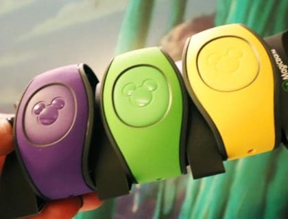 What you Should Never Do with your MagicBand 3