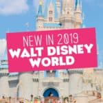 New in 2019 at Disney World