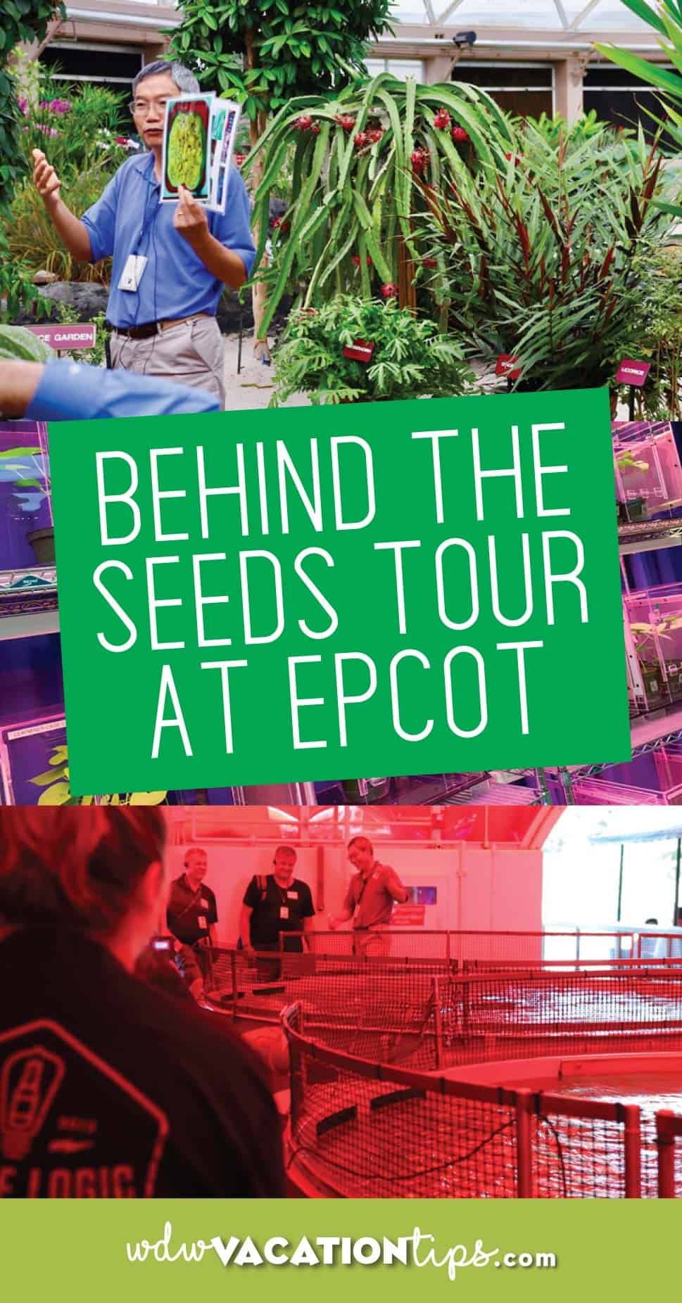 Behind the Seeds Tour Review