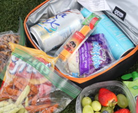 How to Picnic at Disney World with Toddlers