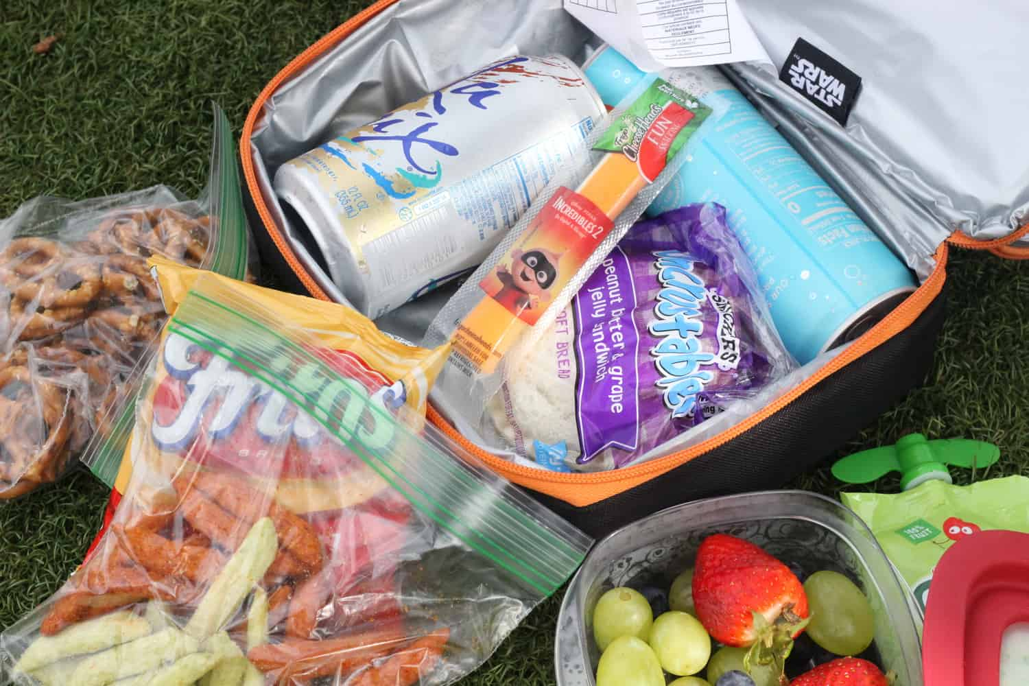 snacks to pack for disney picnics
