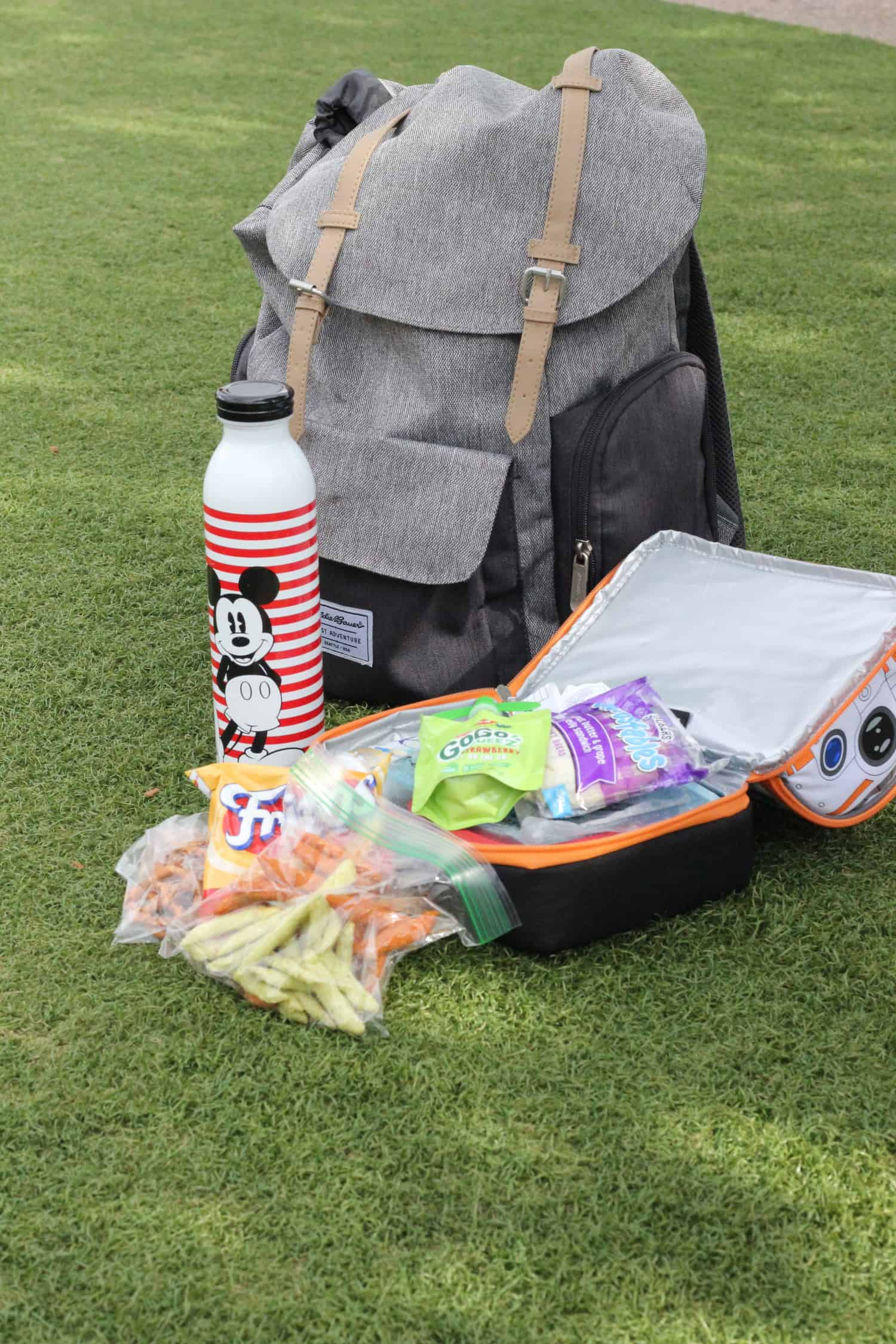 how to picnic with toddlers at disney