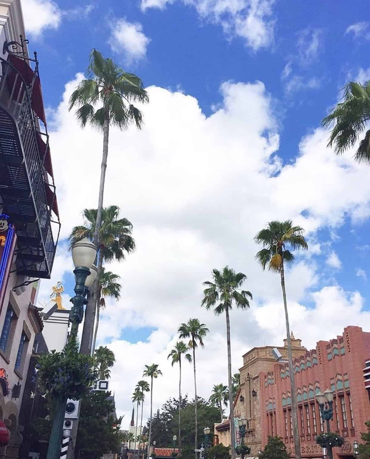 Disney's Hollywood Studios with Preschoolers in One Day 7