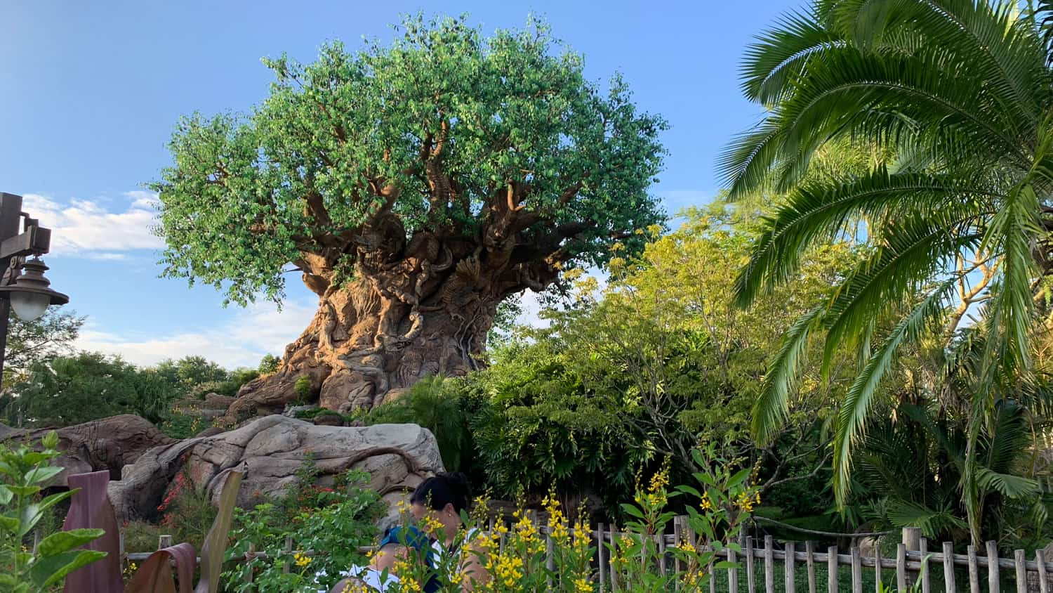 Animal Kingdom Touring Plan: Fastpass Strategy, Dining, and More 7