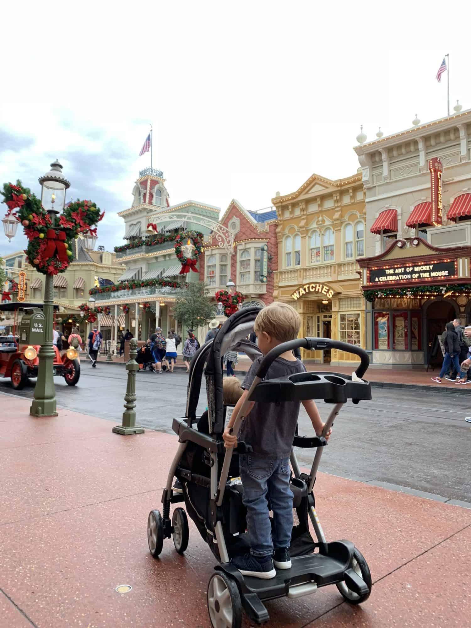Best Stroller for Disney World 9