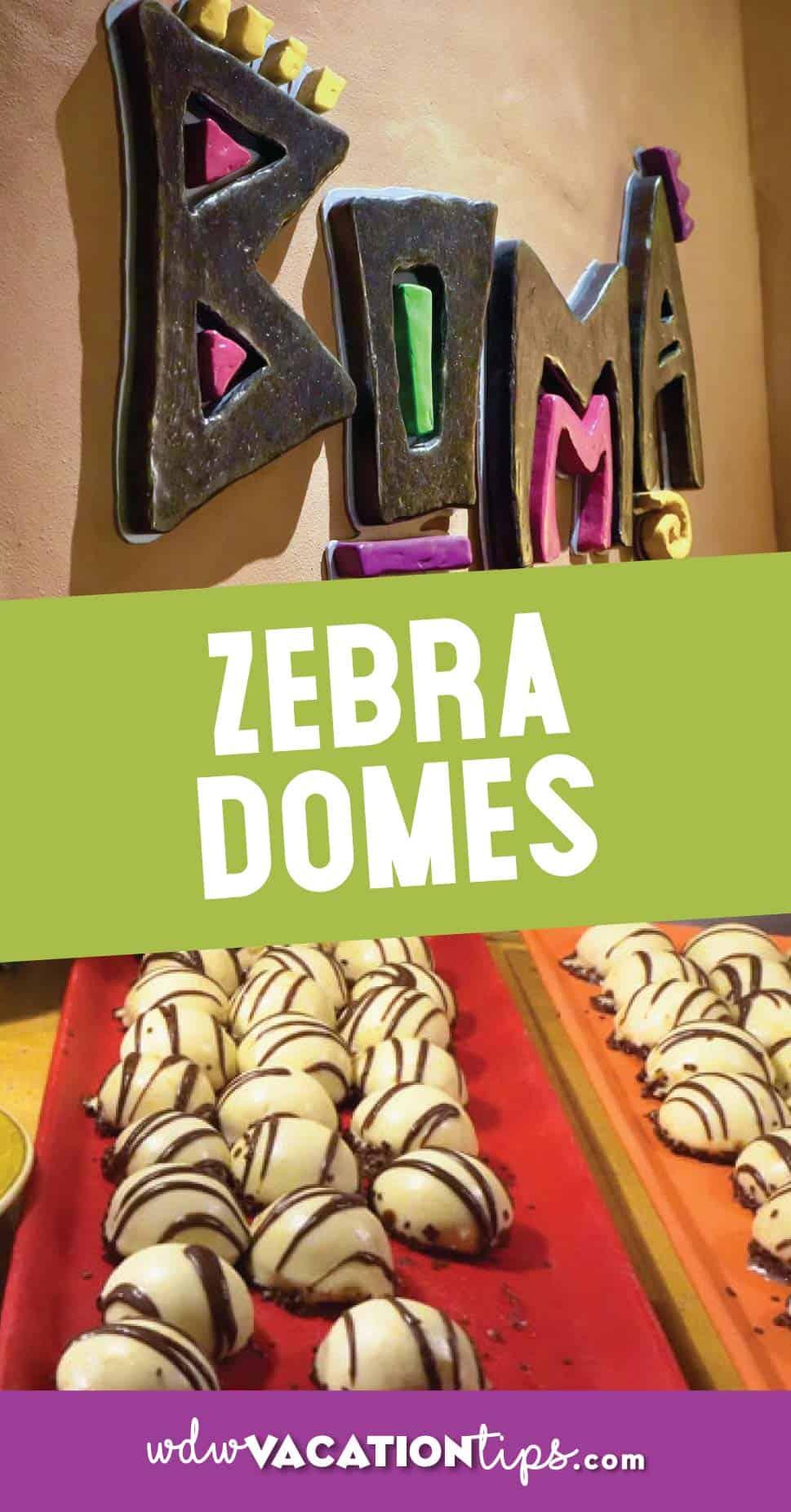 Zebra Domes Disney World