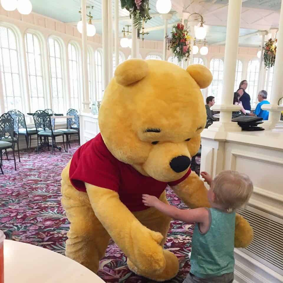 What NOT to do When Toddlers Meet Characters at Disney World 15