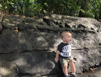 What NOT to do at Disney's Animal Kingdom with Toddlers 7
