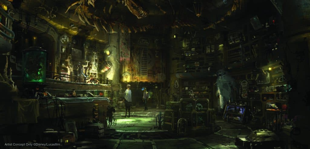 Opening Date for Star Wars Galaxy Edge is Here! 7