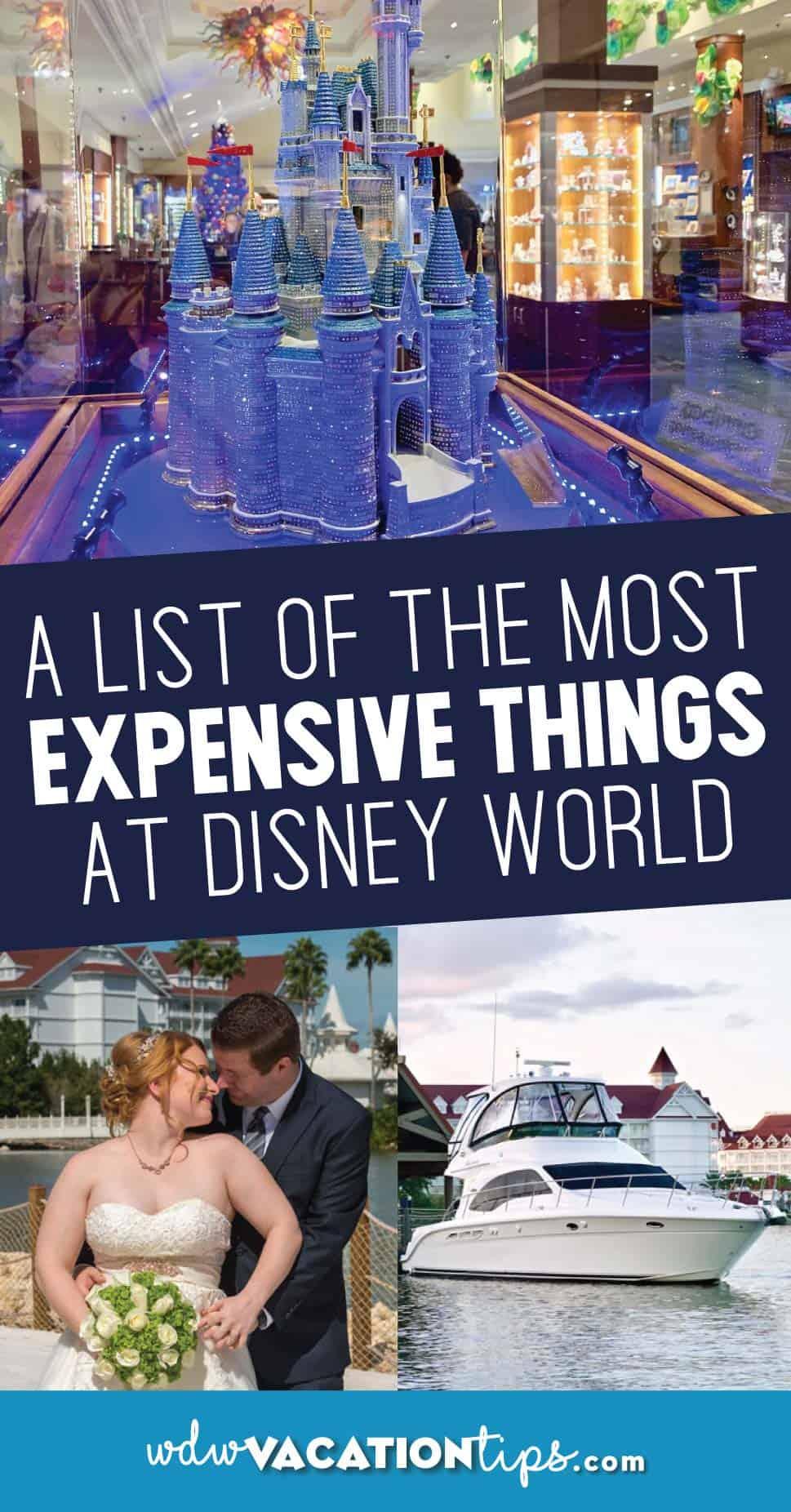 Expensive disney world