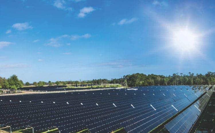 Massive New Disney World Solar Farm 4