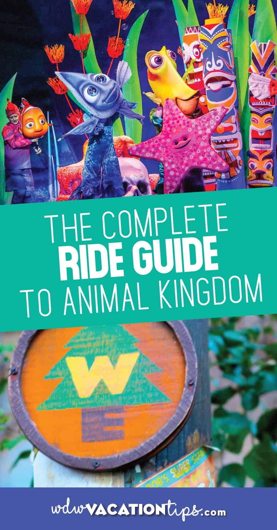 Animal Kingdom Ride Guide