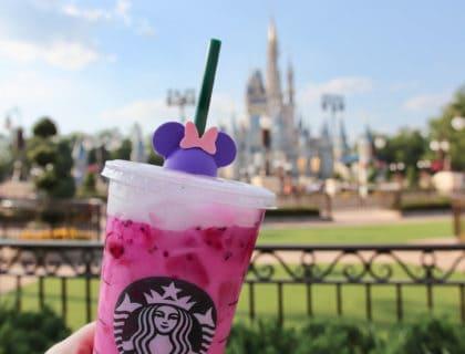 How to do Disney World on a Budget 10