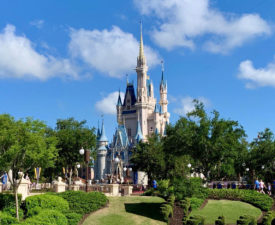 Weird Disney World Activities You Had No Idea About