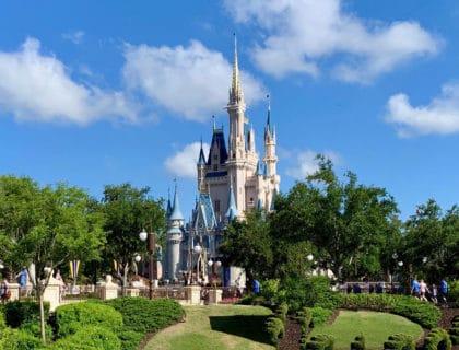Weird Disney World Activities You Had No Idea About 6