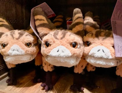 Adopt Loth Cat Plush at Star Wars Galaxy's Edge 16