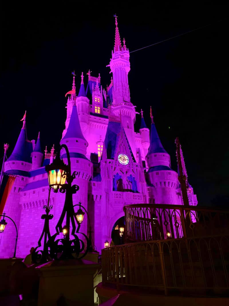 Just When Will Disney World Reopen? 5