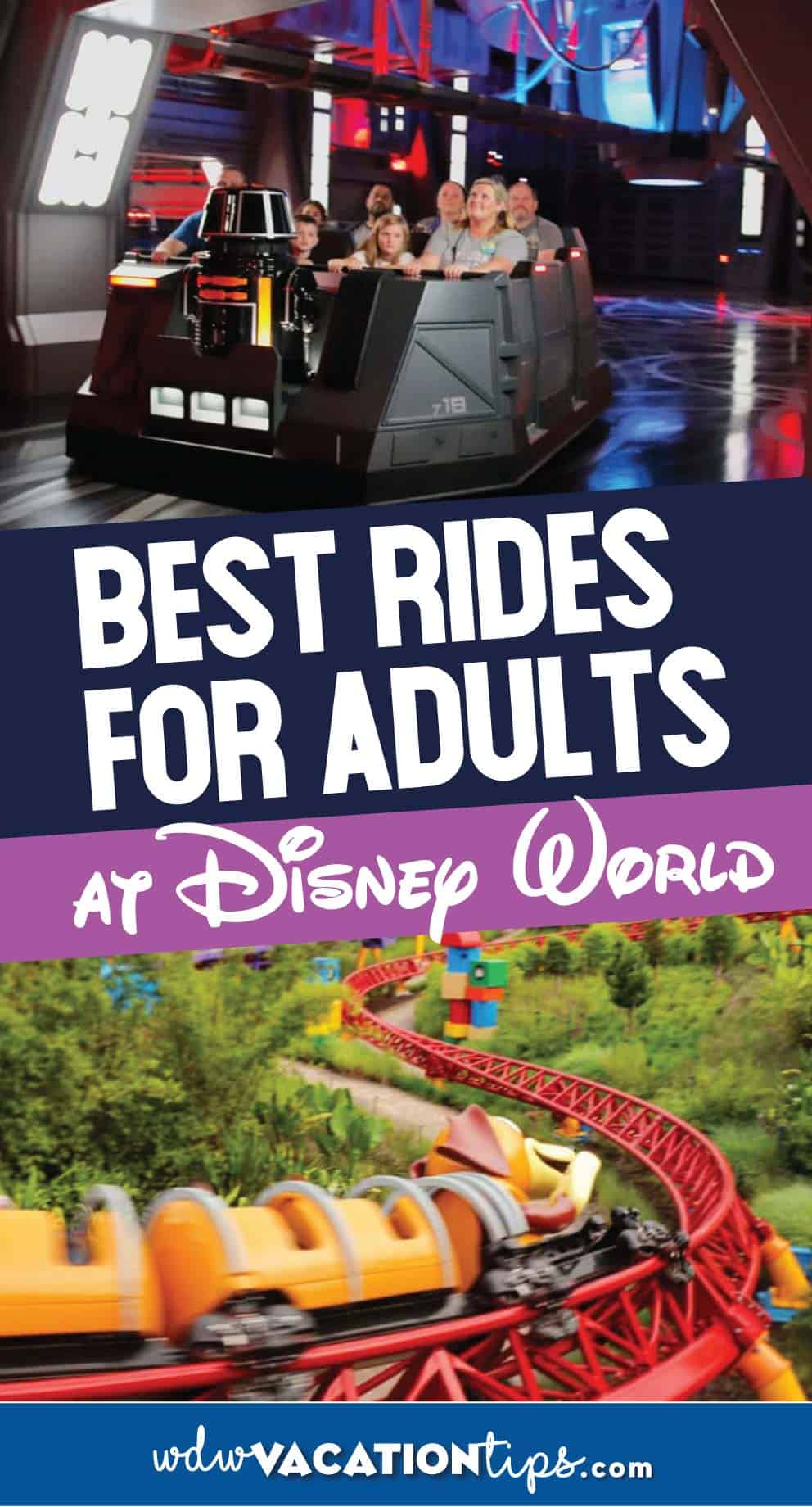 Disney World rides for adults