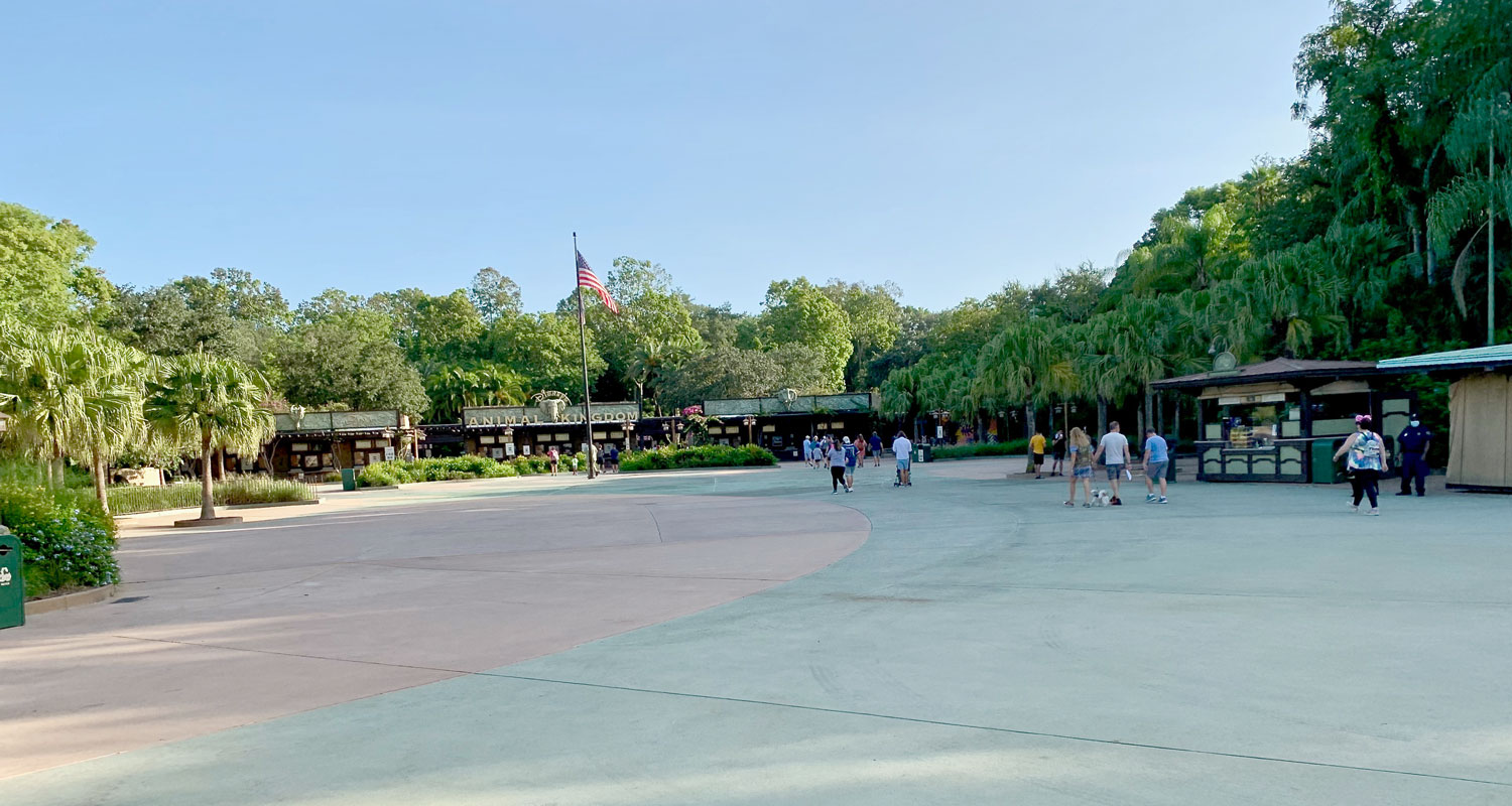 What Disney World is Like Now That it has Reopened 3
