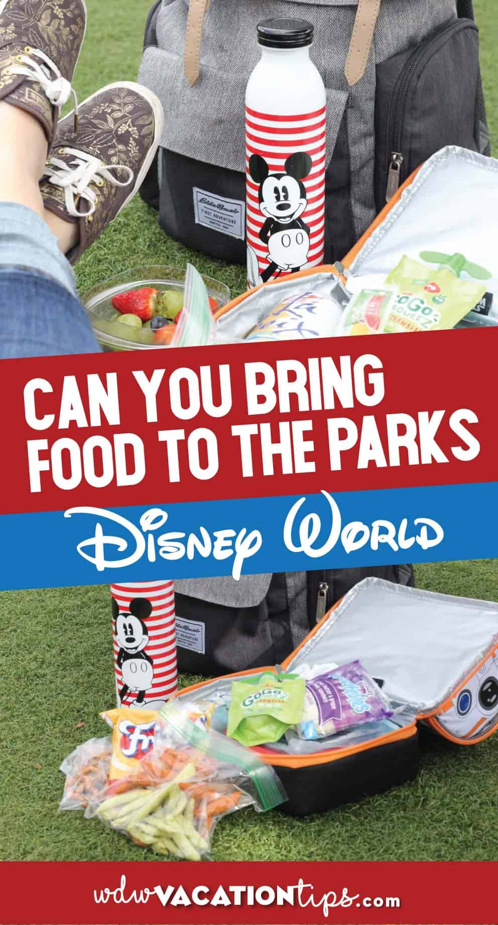 Can you bring food to disney world
