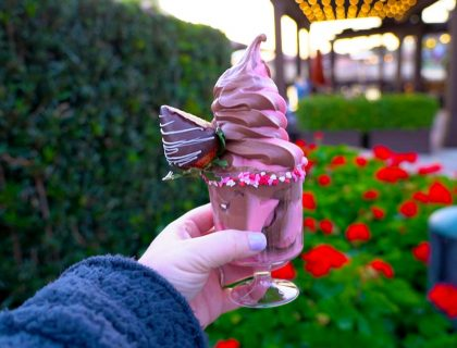 The 10 Best Disney Springs Snack Credits 6