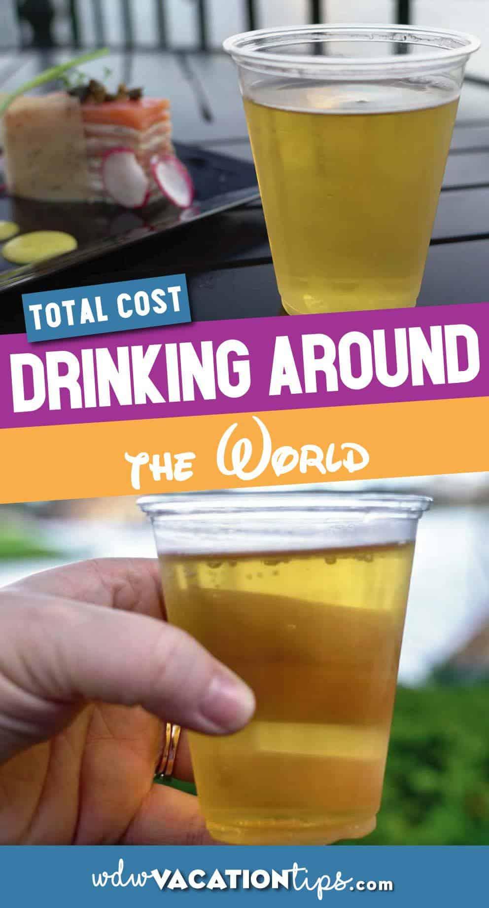 Drinking Around World Cost