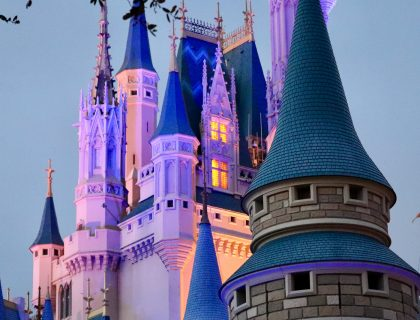 Hidden Mickeys Magic Kingdom 7